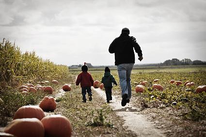 DSC_5035_pumpkin_dash